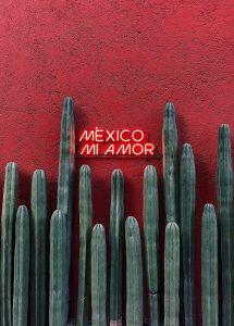 La guida del Messico per nomadi digitali